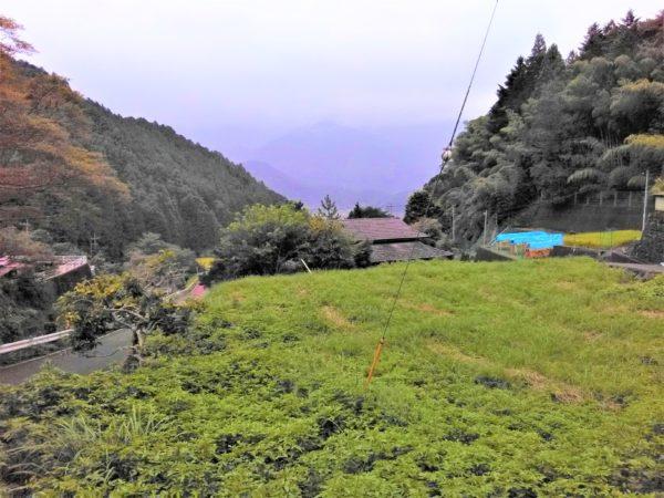 清水区【茂野島】の空き家が多い集落