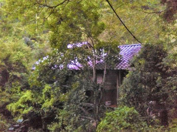 静岡市清水区で見つけた※空き家(その2)