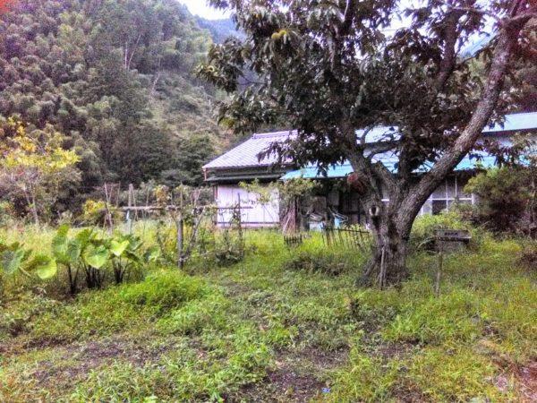 清水区茂野島の空き家
